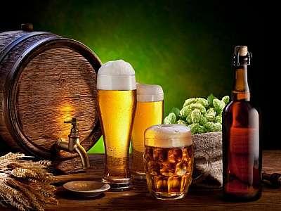 Insumos cerveja