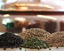 Ingredientes para fabricação de cerveja