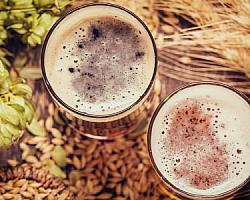 Venda de insumos para cerveja artesanal
