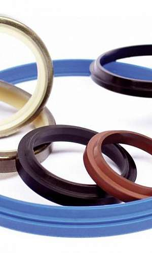 Empresa de anel de vedação