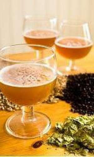 Insumos para cerveja artesanal sp