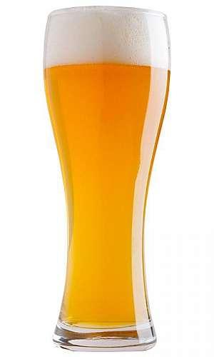 Kit cerveja artesanal 20 litros